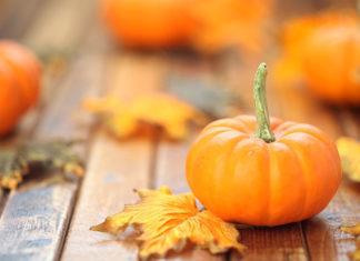 Królowa jesieni – smaczne i proste przetwory z dyni